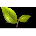 Naturopathic Technology